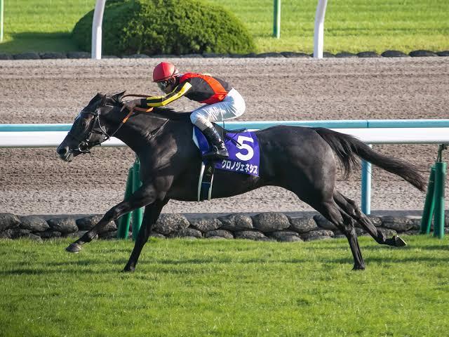 第62回宝塚記念!クロノジェネシスはどんな馬?